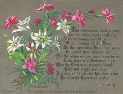 No.5. Dianthus silvestris, Gnaphalium leontopodium, (Edelweiss), chromolithograph by Helga von Cramm, with hymn by F. R. Havergal, 1877.(Pubric Domain)