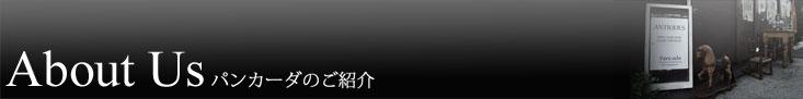 東京目黒区自由が丘 高級アンティーク家具店 パンカーダ